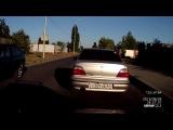 Тупая свинья на дороге !!!!